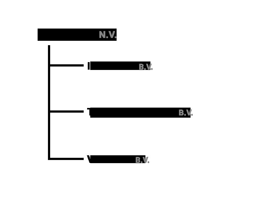 IEX Group NV organigram