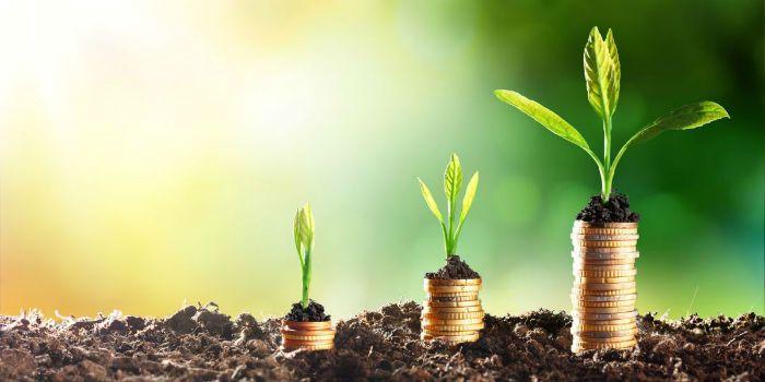 Beleggen in duurzame of fossiele energiefondsen?