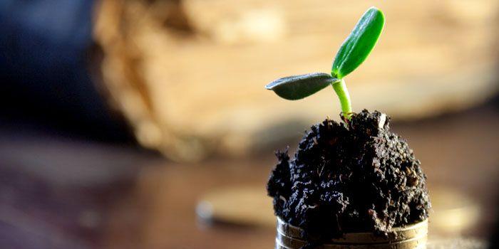 Tracker Tips: ESG-ETF's met factoren kwaliteit en dividend