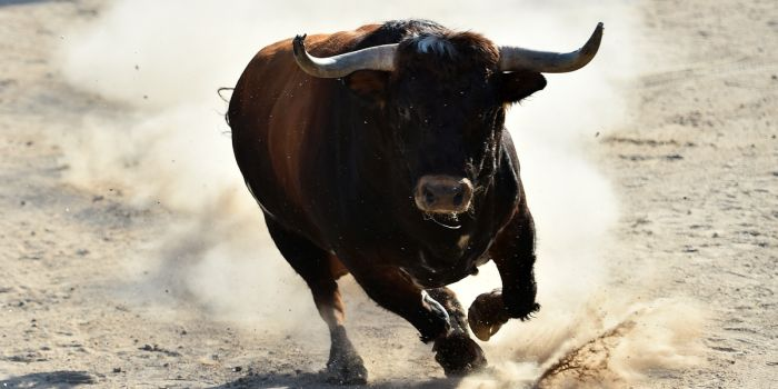 TA: Beleggers stampen bodem stevig aan