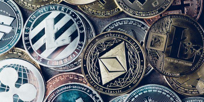 Bitcoin whales en Polkadot