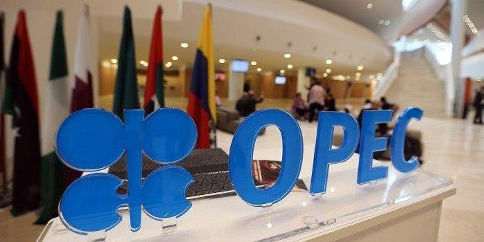 OPEC ziet meer vraag naar olie in 2022