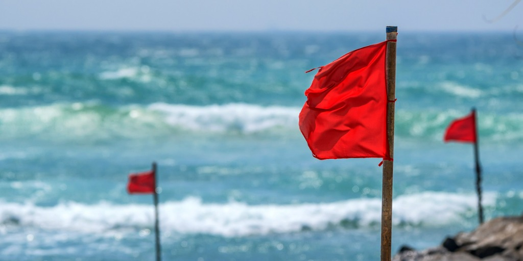 Succesvol beleggen in een woud van rode vlaggen