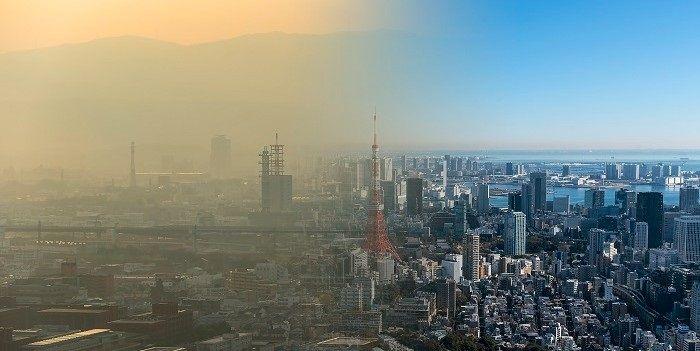 De schaduwkant van overwinningen van klimaatactivisten