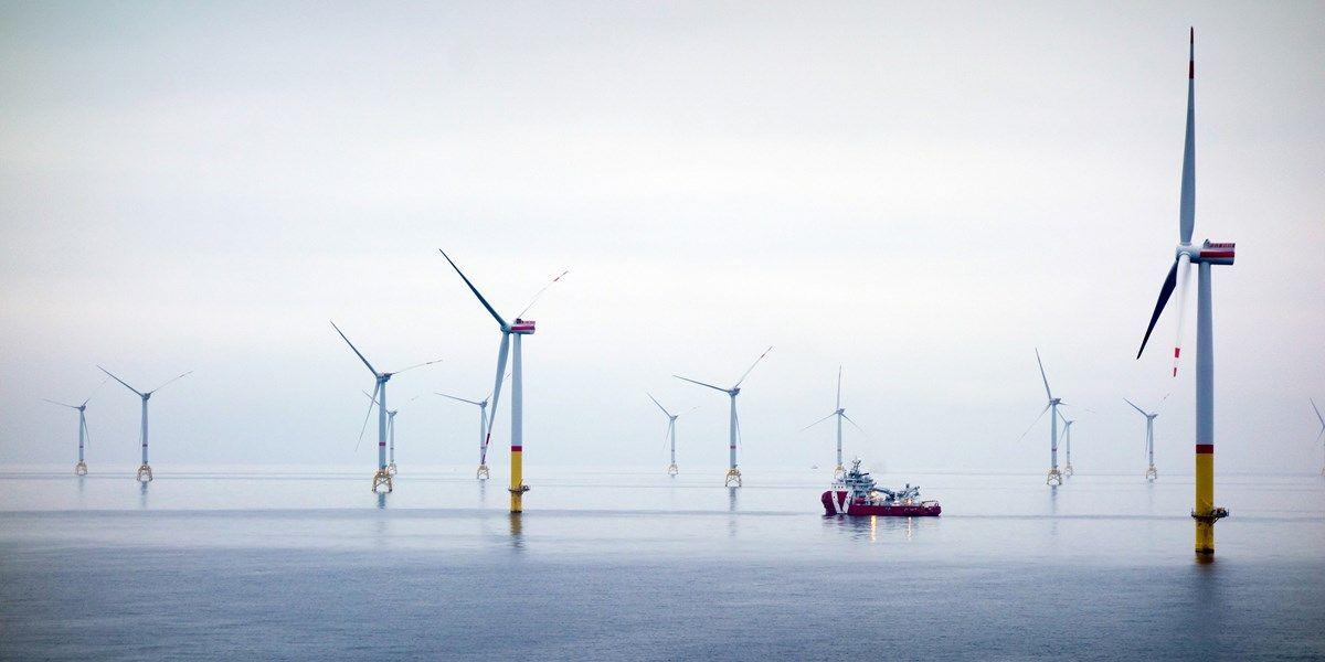 Eneco levert groene stroom aan Amazon - media