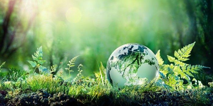 'Groene bubbel' baart AFM zorgen