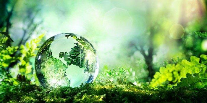 BlackRock stelt klimaattransitie centraal