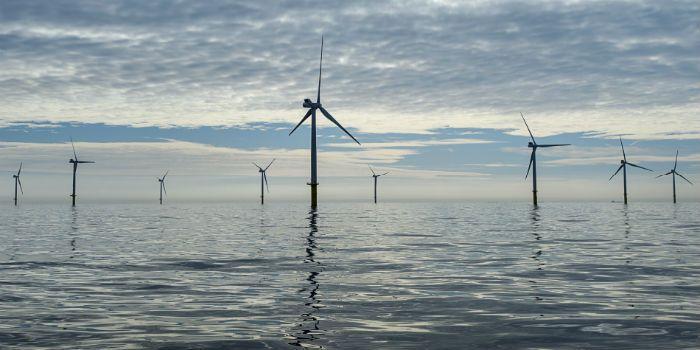 Nederland goed voor helft nieuwe windparken in Europa